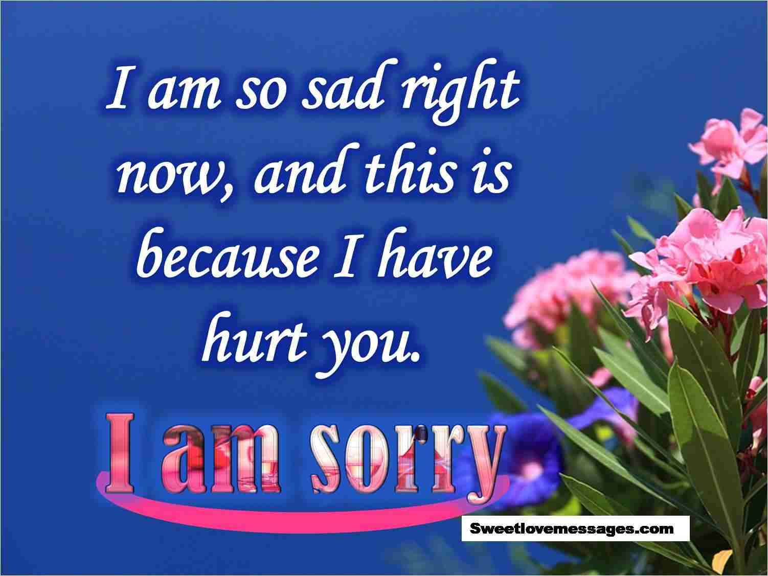 Heart Touching Sorry Lines