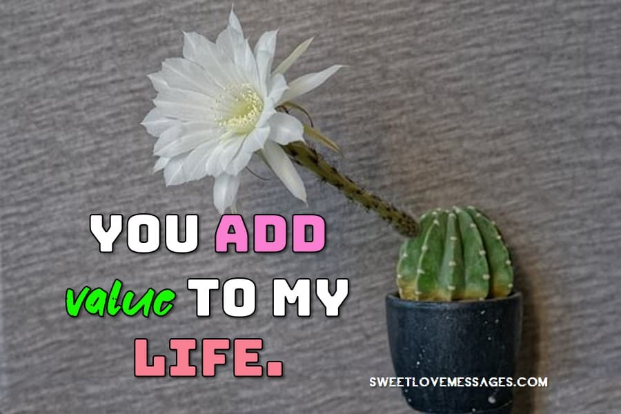 My Life Is Nothing Without You Quotes
