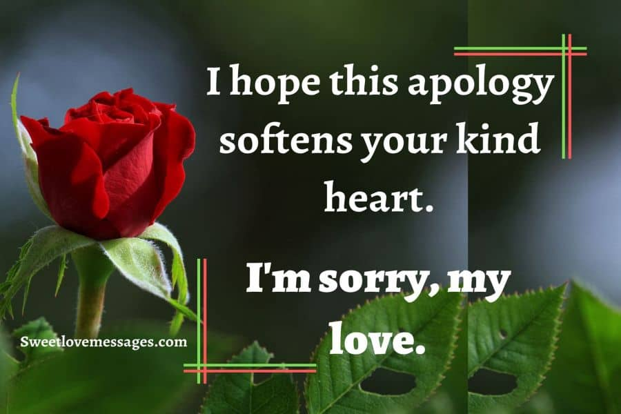 i m sorry text messages poems and quotes sweet love messages